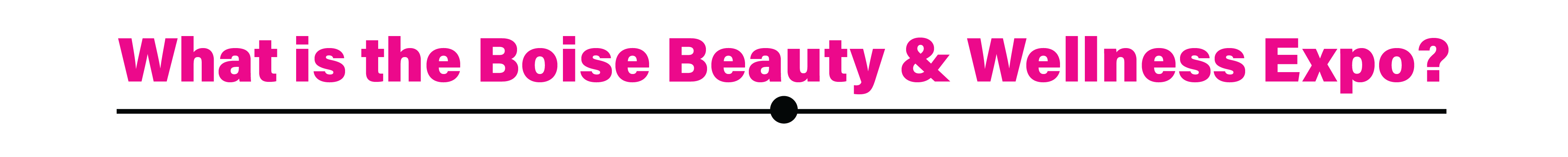 What is Boise Beauty Expo
